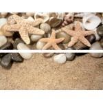 ДЕКОР НАСТЕННЫЙ DUAL GRES Set Starfish