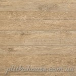Axi Golden Oak 60 LASTRA 20mm 60x60 см